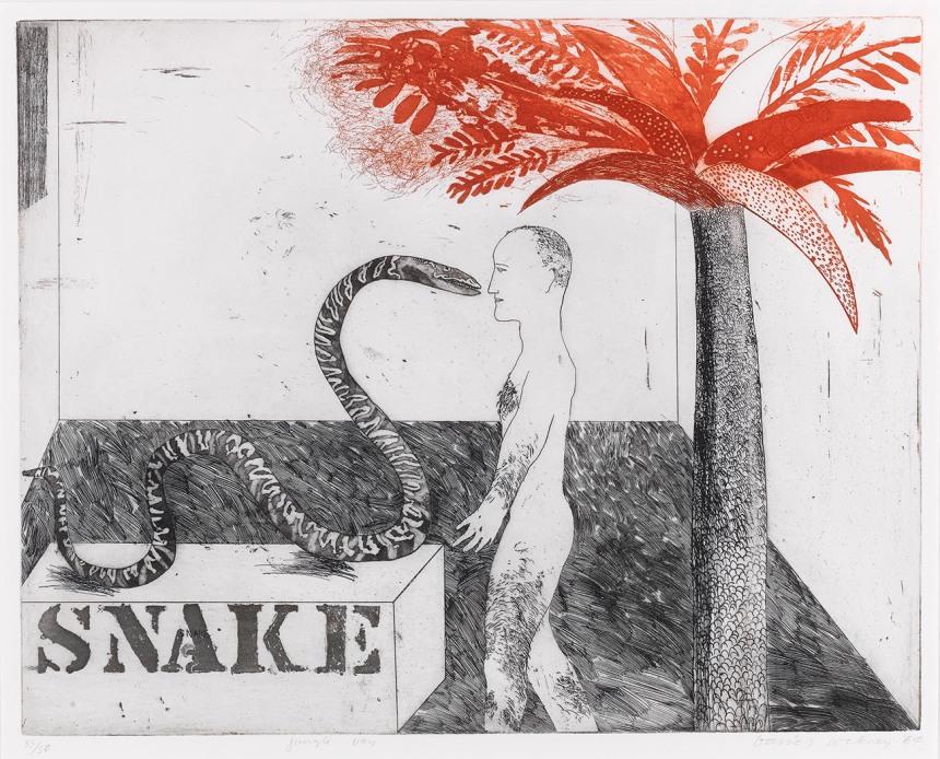 Hockney-Jungle-Boy-1964-LR-1.jpg